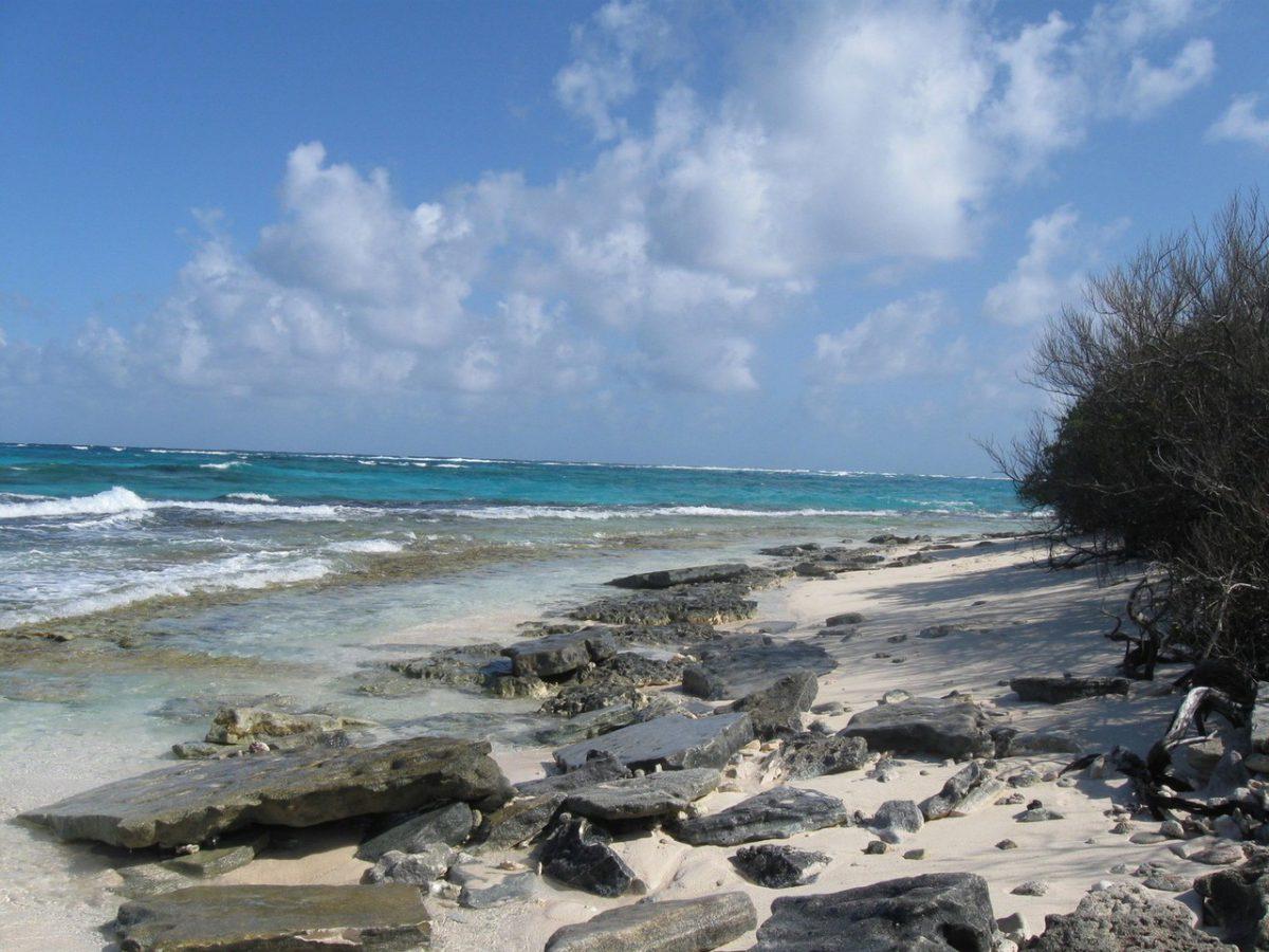 Tortuga bezludna wyspa